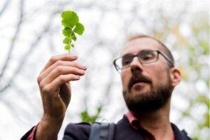 Wandel & Lunch Eetbare wilde planten wandeling @ SmaakPark